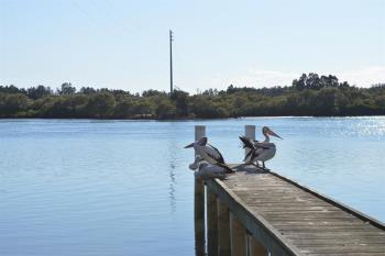 9 Oyster Channel Rd, Yamba, NSW 2464
