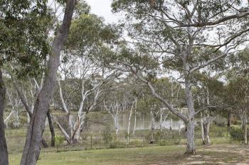 536  Mulwaree Dr, Tallong, NSW 2579