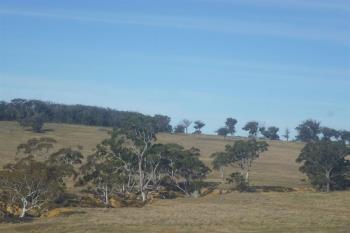 250 Coolabah Rd, Bungonia, NSW 2580