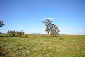 4560 Grain Valley Rd, Boggabri, NSW 2382