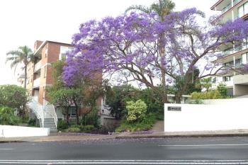 3/8 Wylde St, Potts Point, NSW 2011