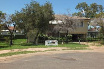 3 Blanche Peadon Dr, Narrabri, NSW 2390