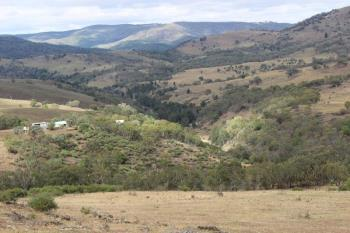 1735 The Bridle Trk, Bruinbun, NSW 2795