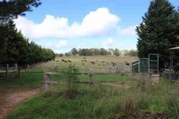 621 Jerrys Meadow Rd, Tarana, NSW 2787