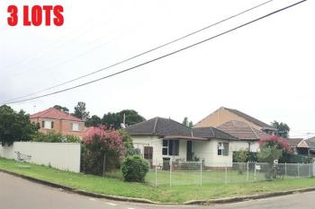 39 Duke St, Canley Heights, NSW 2166