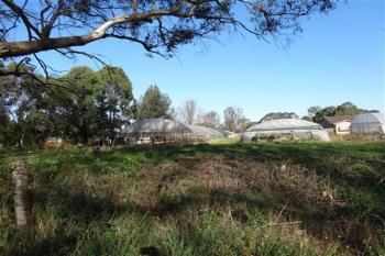 Badgerys Creek, address available on request