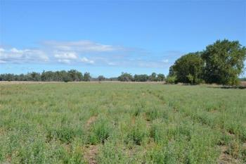 760 Harparary Rd, Harparary, NSW 2390