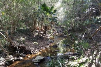 Lot 280 Cedar Hills Rd, Little Forest, NSW 2539
