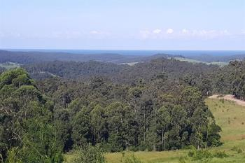 Lot 24 Pointer Rd, Yatte Yattah, NSW 2539