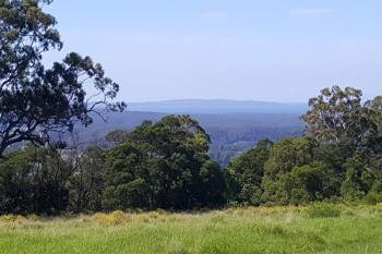 Lot 14 Graydons Pointer Rd, Yatte Yattah, NSW 2539