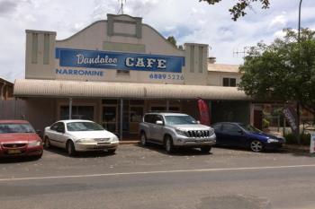 48 Dandaloo St, Narromine, NSW 2821
