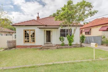 119 Lorna St, Waratah West, NSW 2298