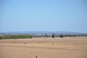 Lot 21 Alcheringa Dr, Forbes, NSW 2871