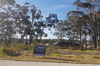 Lot 1004 Churnwood Dr, Fletcher, NSW 2287