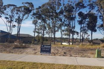 Lot 1002 Churnwood Dr, Fletcher, NSW 2287