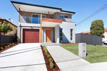 65 Gurney Rd, Chester Hill, NSW 2162