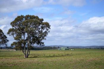177 Golden Plains Dr, Quialigo, NSW 2580