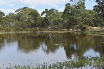 2571 Mayfield Rd, Lower Boro, NSW 2580