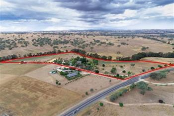 2970 Mitchell Hwy, Molong, NSW 2866