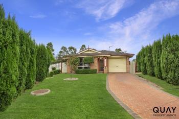 55 Montgomery Cct, Narellan Vale, NSW 2567