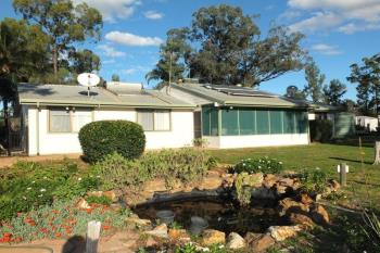 369  Tuppiari Rd, Narrabri, NSW 2390