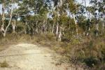 Tallong, NSW 2579, address available on request