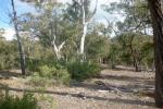 1022 Oallen Ford Rd, Oallen, NSW 2622