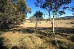 11 Marsh Lane, Jindabyne, NSW 2627