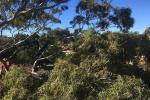 5/2-6 Abbott St, Coogee, NSW 2034
