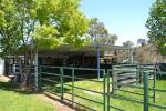 27 Limbri-Weabonga Rd, Tamworth, NSW 2340