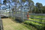 Mindaribba, NSW 2320, address available on request