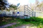 1015 Barraba Rd, Bundarra, NSW 2359