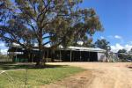 . Nanima St, Eugowra, NSW 2806