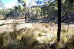 Lot 1 Bingara Rd, Bundarra, NSW 2359