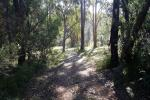 513 Old Nelligen Rd, Nelligen, NSW 2536