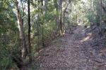 Lot 29 Pointer Rd, Yatte Yattah, NSW 2539