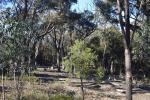 432 Willowglen Rd, Lower Boro, NSW 2580