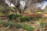 63 High Park Rd, Narromine, NSW 2821