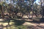 1079 Tantitha Rd, Narromine, NSW 2821