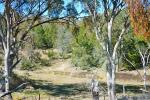 255 Horton Dr, Woodstock, NSW 2793
