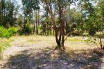 21 Sawmill Lane, Kingstown, NSW 2358