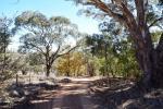 534 Byng Rd, Byng, NSW 2800