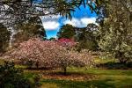 26 Ashgrove Pl, Bundanoon, NSW 2578