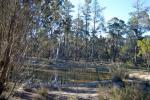 29 Mogo Rd, Windellama, NSW 2580