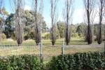 91 Cecil Rd, Orange, NSW 2800