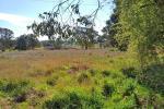 6436 Mid Western Hwy, Lyndhurst, NSW 2797