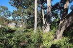 8 Geer Cl, Lemon Tree Passage, NSW 2319
