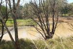 40 Guest St, Narrabri, NSW 2390