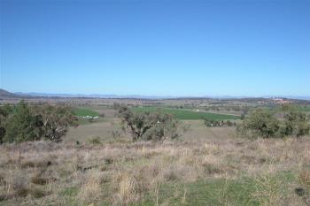 11 Bolah Ridge Rd, Quirindi, NSW 2343