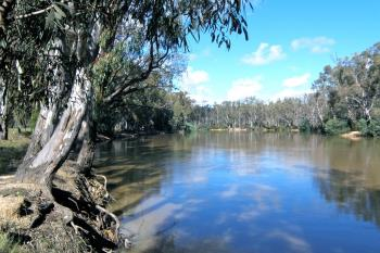 Lots Avail Riverview Dr, Barham, NSW 2732